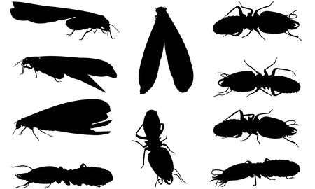Termite silhouette illustration Vector Illustration