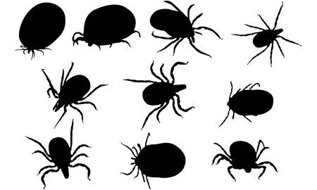 Tick silhouette illustration