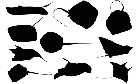 Stingray silhouette illustration