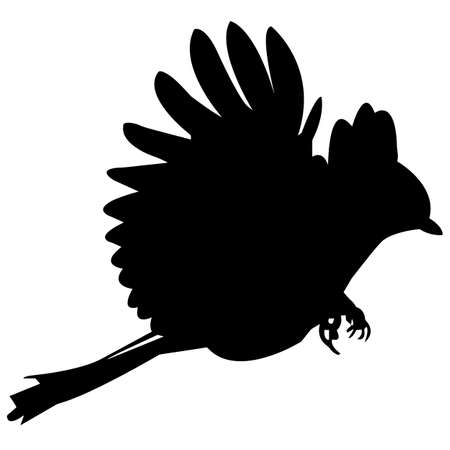 Chickadee Silhouette Vector Graphics