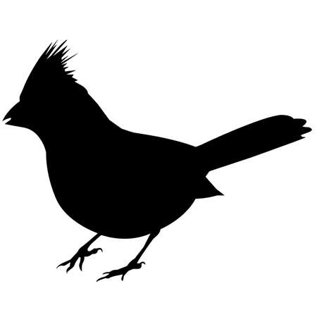 Cardinal Silhouette Vector Graphics Stock Illustratie