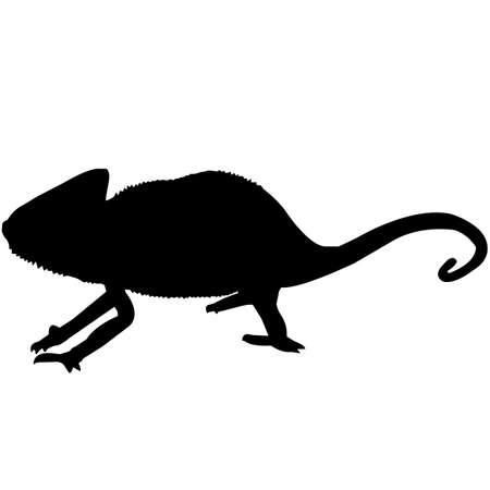 Chameleon Silhouette Vector Graphics