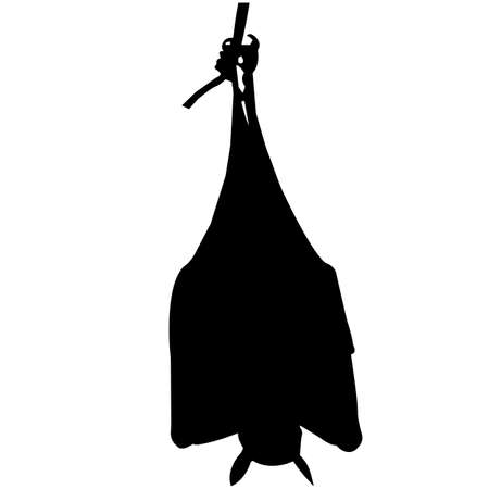 Bat Silhouette Vector Graphics Vector Illustration