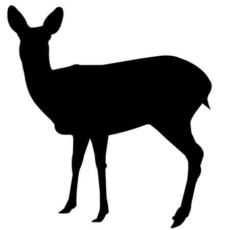 Deer Silhouette Vector Graphics Ilustração