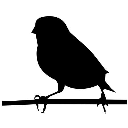 Finch Silhouette Vector Graphics 向量圖像