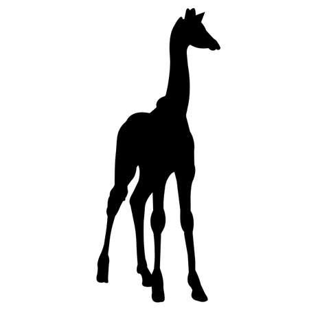 Giraffe Silhouette Vector Graphics