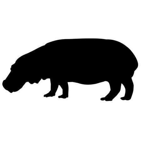 Hippopotamus Silhouette Vector Graphics