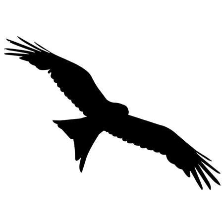 Kite Silhouette Vector Graphics