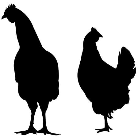 Land Fowl Silhouette Vector Graphics