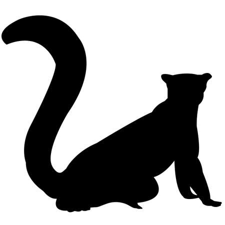 Lemur Silhouette Vector Graphics