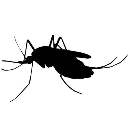 Mosquito Silhouette Vector Graphics