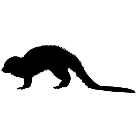 Mongoose Silhouette Vector Graphics