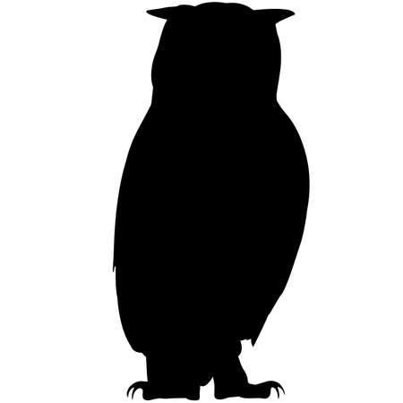 Owl Silhouette Vector Graphics Illustration