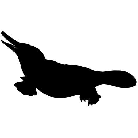 Platypus Silhouette Vector Graphics