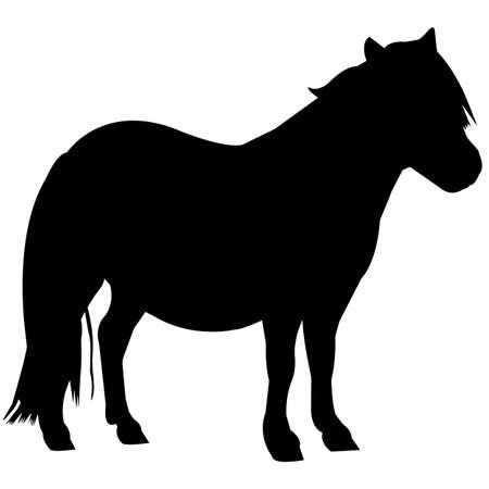 Pony Silhouette Vector Graphics 免版税图像 - 157927560