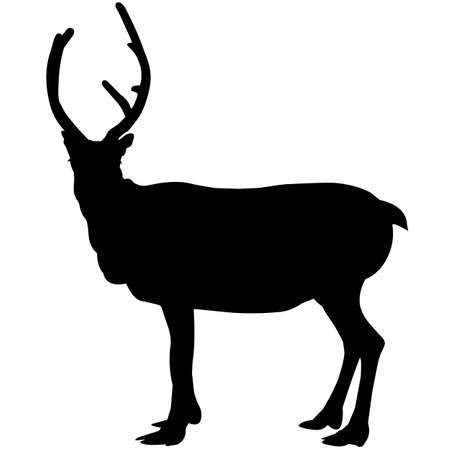 Reindeer Silhouette Vector Graphics