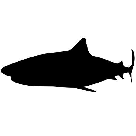 Shark Silhouette Vector Graphics 向量圖像