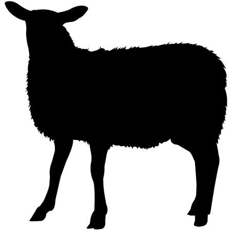 Sheep Silhouette Vector Graphics 矢量图像