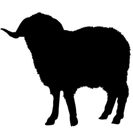 Sheep Silhouette Vector Graphics Ilustração