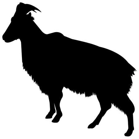 Tahr Silhouette Vector Graphics