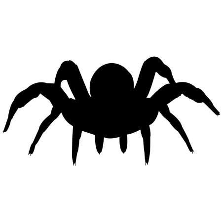 Trapdoor spider Silhouette Vector Graphics