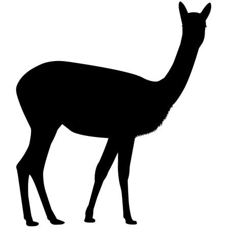 Vicuna Silhouette Vector Graphics 写真素材 - 157930338