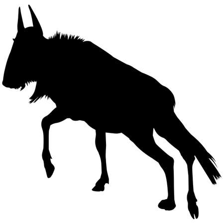 Wildbeest Silhouette Vector Graphics