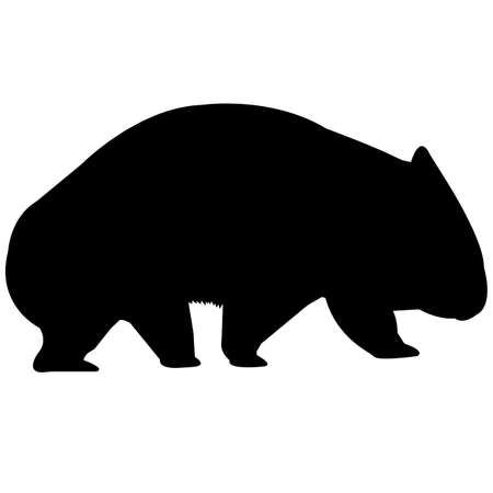 Wombat Silhouette Vector Graphics