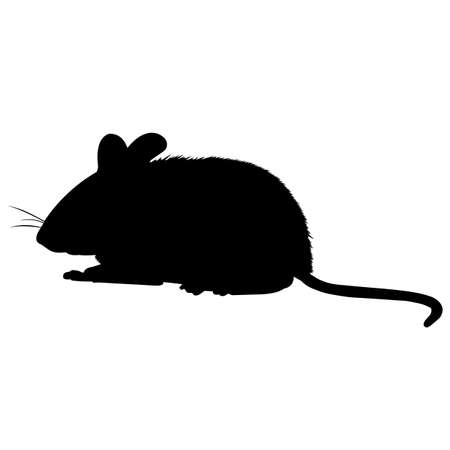 Vole Silhouette Vector Graphics