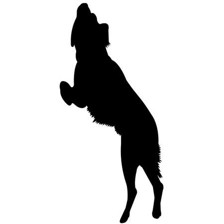 Brittany Spaniel Dog Silhouette Vector Graphics 矢量图像