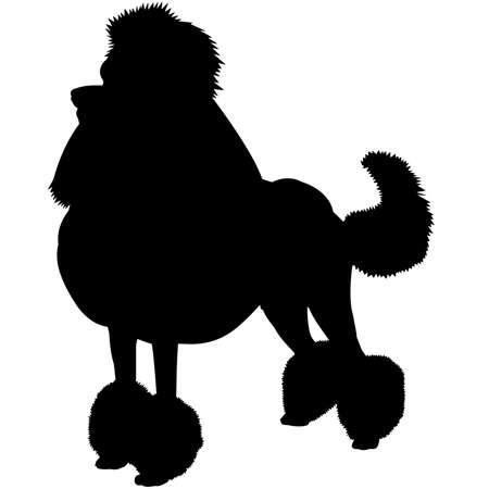 Poodle Dog Silhouette Vector Graphics Vektoros illusztráció