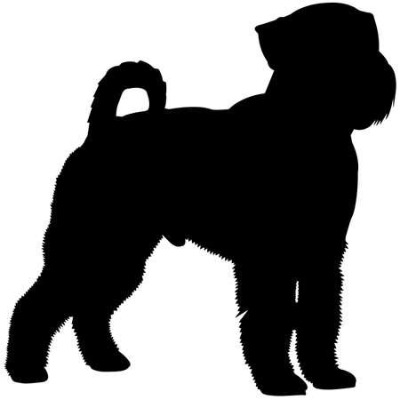 Miniature Schnauzer Dog Silhouette Vector Graphics