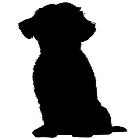 Shih Tzu Dog Silhouette Vector Graphics