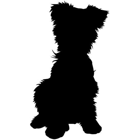 Yorkshire Terrier Dog Silhouette Vector Graphics