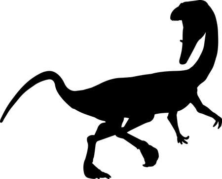 Coelophysis 9 isolated vector silhouette