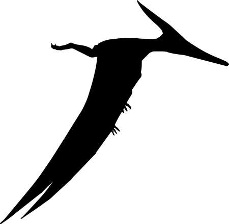 Pteranodon 6 isolated vector silhouette