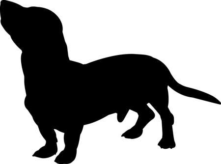 Basset Hound 8 isolated vector silhouette