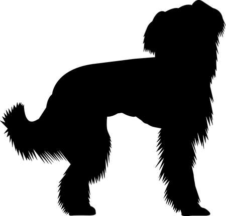 Chinese Crested Dog 4 isolated vector silhouette