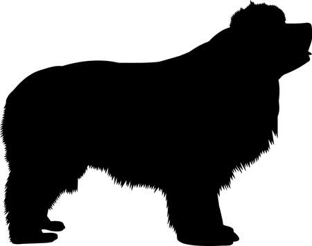 Newfoundland 5 isolated vector silhouette