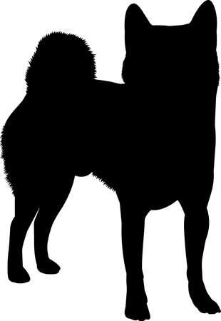 Shiba Inu 1 isolated vector silhouette Ilustracja