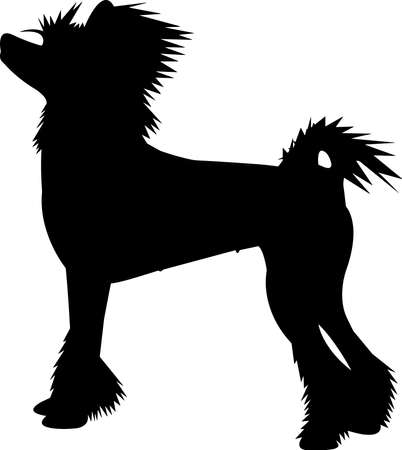 Chinese Crested Dog 9 isolated vector silhouette