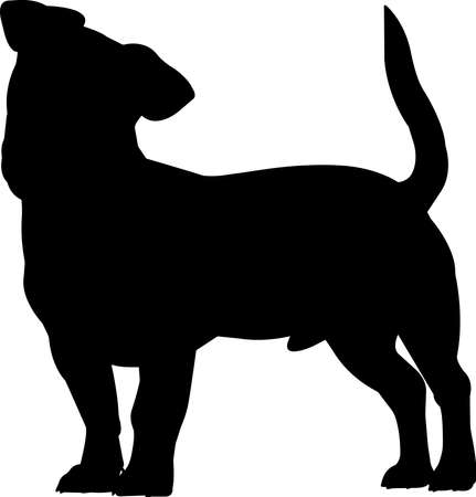 Jack Russell Terrier 5 isolated vector silhouette