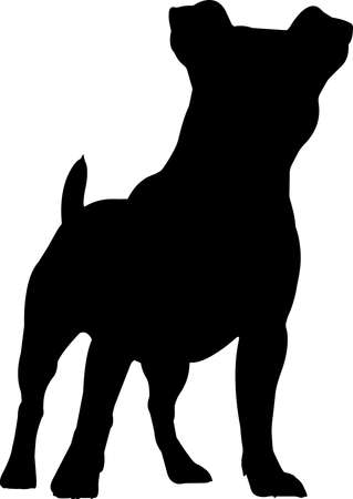 Jack Russell Terrier 8 isolated vector silhouette