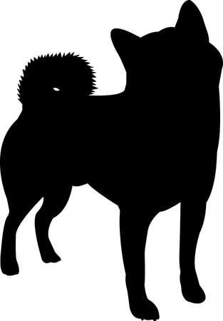 Shiba Inu 10 isolated vector silhouette