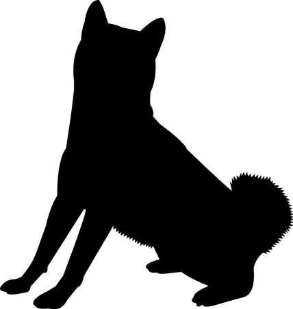 Shiba Inu 7 isolated vector silhouette