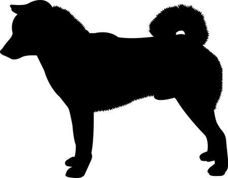 Shiba Inu 6 isolated vector silhouette