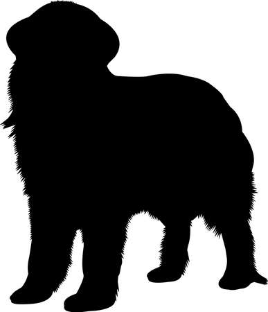 Newfoundland 3 isolated vector silhouette