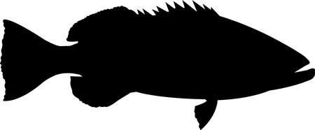 Black Grouper Fish Silhouette Vector