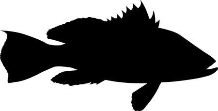 Black Sea Bass Fish Silhouette Vector