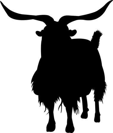 Cashmere Goat Vector Silhouette Ilustração